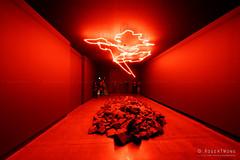20160625-01-Mt Jim field outline by Cameron Robbins at MONA (Roger T Wong) Tags: art museum rocks australia mona exhibition tasmania hobart 2016 meon berridale sony1635 museumofoldandnewart rogertwong sel1635z sonya7ii sonyilce7m2 sonyalpha7ii sonyfe1635mmf4zaosscarlzeissvariotessart