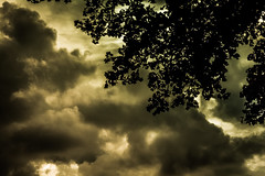 Inevitable (Kevin STRAGLIATI) Tags: light sunset sky storm tree nature clouds fight campaign threat explored