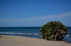 Mediterrneo (Cristina Campos Fraile) Tags: sea summer espaa naturaleza beach nature mar mediterraneo view outdoor paz verano nikond5200