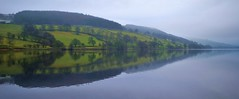 EARLY REFLECTIONS By Angela Wilson (angelawilson2222) Tags: wood trees light mist lake water reflections landscape view yorkshire hill reservoir valley scenary dales gouthwaite