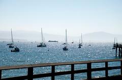 Armada, Parked (hectic skeptic) Tags: santabarbara markamorgan harbor boats coast california cali ca beach sand wharf pier 2016 dockbay