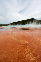 DSD_1482 (pezlud) Tags: yellowstone nationalpark landscape geyserbasin grandprismaticspring midwaygeyserbasin geyser park