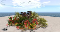 ".:Tm:. Creation Tropical Flowers Plants Rocks Arrangement ""M12"" (.:Tm:. Creation by Tm Susanowa) Tags: creation tm creations"