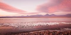 Salt lake (ckocur) Tags: chile atacama sanpedrodeatacama northernchile atacamadesert