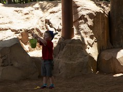 Fun in the Dino Dig Sandbox - The Boneyard Play Area - Disney's Animal Kingdom - 5.13 (meanderingmouse) Tags: travel disney cash canonef24105mmf4lis