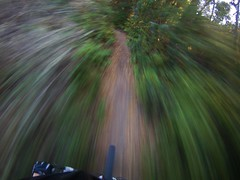 FILE1864 (LazyBoyDays) Tags: california road park santa camera light santacruz motion blur bike speed turn forest point fun bicycling spring sand scottsvalley day open looking view ride floor offroad time sweet pov space cam sandy helmet trails fast off dirty mount dirt trail riding cruz valley cycle mtb mounted daytime felton scotts speeding turning blury foward