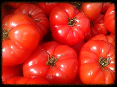 Local Reds (Adam Swaine) Tags: uk red england english church beautiful photography britain tomatoes naturelovers swaine samsungmobile 2013 thisphotorocks mostbeautifulpicturesmbppictures wwwadamswainecouk