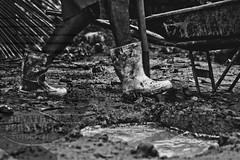 Cavando (Jonathan Fernandes.) Tags: branco de blackwhite agua digging chuva pb preto e mao pernas lama terra p pretoebranco carrinho poa poo p araatuba cavar cavando