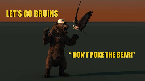"Bruins Bear • <a style=""font-size:0.8em;"" href=""http://www.flickr.com/photos/97803833@N04/9093830047/"" target=""_blank"">View on Flickr</a>"