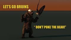 Bruins Bear