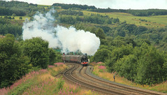 Scarborough Flyer (Stephen Robb Photography) Tags: york trees cloud grass rain manchester countryside flyer pacific junction class steam hills crewe scarborough oldham express sutherland bushes duchess diggle lms 460 8p of 46233 46233diggle