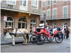 DSCF6966 (annelies_visser) Tags: horse wagon carriage neworleans streetview paard vieuxcarre