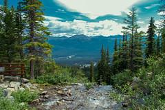 At The Top (Megan C Johnston) Tags: canada nature landscape alberta banff banffnationalpark