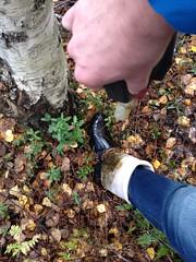 IMG_0902 (jazka74) Tags: original fun boots rubber hunter wellies wellworn