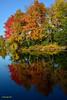Octobre en couleurs (anjoudiscus) Tags: autumn trees fall nature colors automne reflections landscape couleurs ange 9 arbres québec paysage reflets chromatic octobre d800 terrebonne 2013 chromatique réflexions nikkor28300mmvr îlesdesmoulins fromyoutous