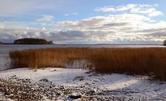 Joensuu - Finland (Sami Niemeläinen (instagram: santtujns)) Tags: suomi finland landscape maisema autumm joensuu noljakka pyhäselkä aavaranta