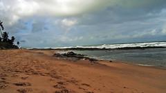 Costa do Sauipe (ALEMSOUZA56) Tags: costa brasil de do bahia so mata joo sauipe 2013
