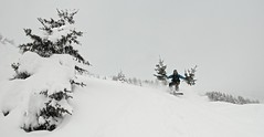 9h65 (HrrayFrunk) Tags: snow alps tree forest snowboarding back ride board country free powder snowboard backcountry freeride