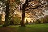 Last sun over Kalheupink ! (Sunstonecruiser) Tags: landscapes mygearandme flickrstruereflection1 flickrstruereflection2 flickrstruereflection3 flickrstruereflection4 flickrstruereflection5 flickrtruereflection3