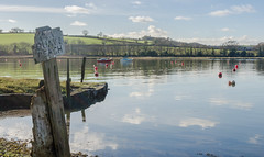 Quay & Beach (SJLens) Tags: water reflections devon berealston decayedsign weirquay