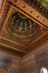 Beauty after death (Ryoushi no syokubutsuen) Tags: art sahara nature landscape desert arabic v berber mausoleum mohammed marocco marrakech rabat magrib almagrib medrassa