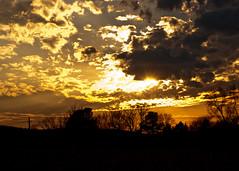 Golden Sunset (tommaync) Tags: trees sunset orange sun nature clouds golden nc nikon january northcarolina 2014 chathamcounty d40