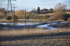 Bury St Edmunds Flood 7-2-2014 (Martin Pettitt) Tags: winter water suffolk flood meadows february dslr flooded burystedmunds 2014 riverlark nikond90 afsdxvrzoomnikkor18105mmf3556ged wettestwinter