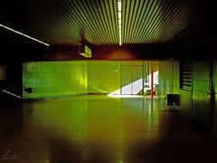 U 35 (peterpe1) Tags: urban green germany subway europe stadt ubahn grün herne u35 {vision}:{sky}=0504 {vision}:{dark}=0572 {vision}:{plant}=0727 {vision}:{sunset}=0607 hötkeskampring