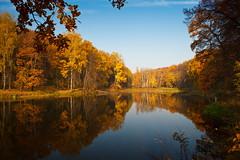 Autumn   colours (Petr Vorobyev) Tags: autumn water canon eos colours canoneos5dmarkii canonautumn canonwater 5dmarkii mygearandme blinkagain bestofblinkwinners blinksuperstars