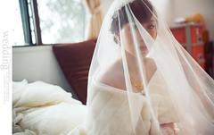 DSC_1356 (Neko11 ()) Tags: wedding portrait  neko                                              neko11