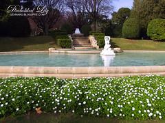 Palau Reial (26-01-2014) (13) (Lily Skai) Tags: naturaleza nature fountain statue fuente estatua palaureialbarcelona fujifilmfinepixs2980