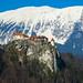 Blejski grad - Bled castle