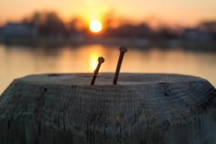 Sunset (mgiampaolo96) Tags: sunset canon newjersey dusk nj nautical jerseyshore goldenhour canonrebelt3i