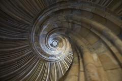 Looking at me? (klickertrigger) Tags: castle architecture stair treppe staircase architektur schloss sandstein wendeltreppe