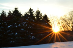 Breathe, Fly (Autumn's Lull) Tags: trees winter light sky sun snow cold fly stream bright air release free sunny fresh rush breathe breeze refreshing invigorating