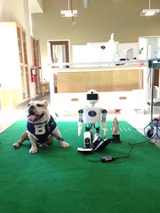 """So @FatherMarquette says @MarquetteU students are working on soccer playing robots. I'm alerting the @BIGEAST! #BigDawgsTour • <a style=""""font-size:0.8em;"""" href=""""http://www.flickr.com/photos/73758397@N07/16216799480/"""" target=""""_blank"""">View on Flickr</a>"""
