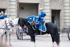Mounted drummer (quinet) Tags: horses sweden stockholm reiter royalguard pferde 2012 chevaux cavaliers hgvakten knigsgarde garderoyale camera:model=nikond80 geo:country=sweden geo:city=stockholm geo:state=stockholm camera:make=nikoncorporation exif:make=nikoncorporation exif:lens=1050mmf28 exif:model=nikond80 exif:focallength=105mm exif:aperture=35 exif:isospeed=200 geo:location=stockholmsweden