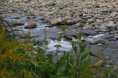 Lidder river (Debmalya Mukherjee) Tags: longexposure india jammuandkashmir pahalgam lidder 18135 incredibleindia lidderriver canon550d debmalyamukherjee