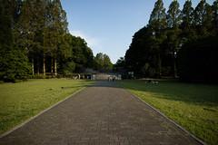 (Norio.NAKAYAMA) Tags: park rose japan  saitama  omiya         eosm3