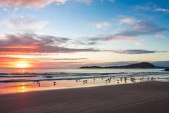 bombas-0060 (iedafunari) Tags: santa praia brasil mar barco gaivotas catarina amanhecer bombas canoa bombinhas