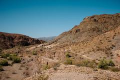 5R6K2877 (ATeshima) Tags: arizona nature havasu