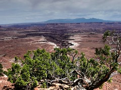 Canyonlands NP - San Juan County, Utah, USA(2) (Udo S) Tags: canyonland panoramio9023519128560856