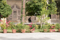 Shiraz's Tomb of Hafez -  solitude for a quiet phone call (10b travelling) Tags: woman persian asia asien quiet peace iran tomb middleeast persia mobilephone poet shiraz asie iranian hafez 2014 neareast moyenorient naherosten mittlererosten tenbrink aramgahehafez carstentenbrink aramgahe westernasia iptcbasic 10btravelling