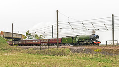 Flyer (4486Merlin) Tags: york england europe unitedkingdom transport steam railways northyorkshire flyingscotsman gbr overton ecml stdr cathedralsexpress 200miles 60103 wcrc exlner lnerclassa3