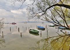 Ammersee , Germany (adr.vesa) Tags: trees panorama lake nature water bayern bavaria landscapes boat reflexion ammersee