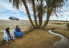 Pause at the oasis (rodrigocarabajal) Tags: a7ii alpha7 sonya7ii oasis morocco marruecos marokko sand dunes ergchigaga mhamid travel nomad berber travellight worldtrekker