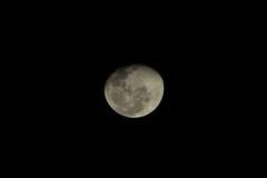 Uma foto que demorou 4 luas cheias para ser capturada. Demorou mas cheguei na configurao certa. (nnessies) Tags: moon canon lua t5 75300mm