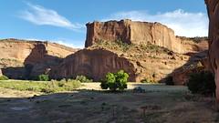 Navajo farm on the floor of Canyon de Chelly