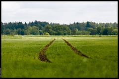 Tracks on Green (Mika Latokartano) Tags: summer canon finland dof tracks farmland depthoffield soil 70200 ef70200mmf4lisusm