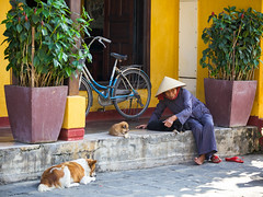 Senior woman in conical hat is playing with puppy on the street of Hoi An ancient town (Evgeny Ermakov) Tags: life street old city travel red summer people urban woman dog green heritage tourism senior colors hat bike bicycle yellow puppy asian town ancient asia southeastasia vietnamese sitting antique traditional culture lifestyle landmark scene retro vietnam clothes hoian exotic sit flipflops destination rest local southeast typical conical touristic vietnamesehat conicalhat asianhat traditionalhat
